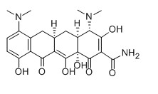 Minocycline